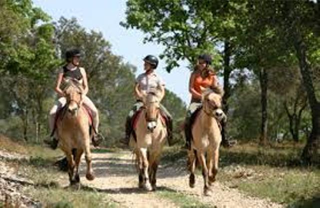 balad cheval campagne